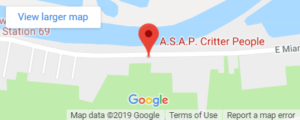 ASAP Critter People | About - Wildlife Control | Animal Removal | Critter Trapping – Cincinnati